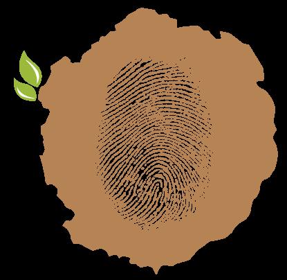 טביעת עץ - לוגו עבודות עץ בירושלים